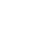 Performing Arts Fund NL